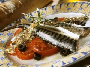 Marinierte Makrelen Rezept