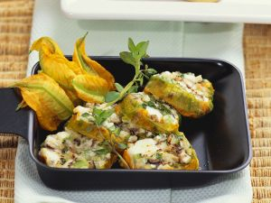 Mit Käse gefüllte Zucchiniblüten Rezept