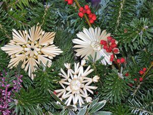 Nachhaltigkeit unterm Weihnachtsbaum