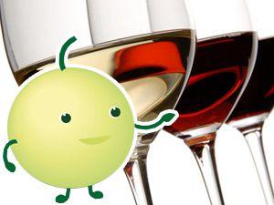 Hilfe von PAUL – dem virtuellen Weinberater