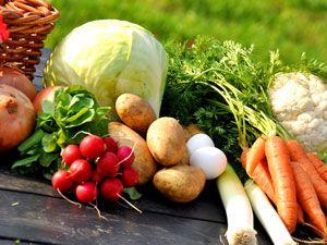 Gibt es die perfekte Ernährung für alle?