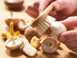 So säubern Sie Pilze richtig