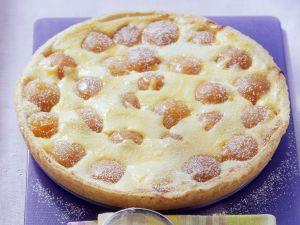 Quarkkuchen mit Aprikosen Rezept