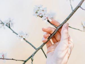 Frühlingsdeko selber machen