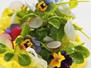 Salat mit Essblüten Rezept