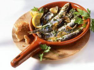 Sardinen mit Knoblauch und Kräutern Rezept