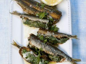 Sardinen mit Spinat gefüllt Rezept