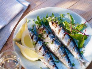 Sardinen vom Grill Rezept