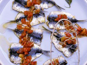 Sardinenfilets mit Tomaten Rezept