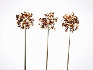 Speck-Pflaumen-Lollies Rezept