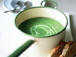 Spinat-Brennnessel-Suppe Rezept