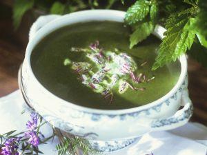 Suppe aus Brennnessel und Morcheln Rezept