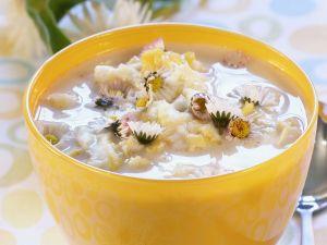 Suppe mit Gänseblümchen Rezept