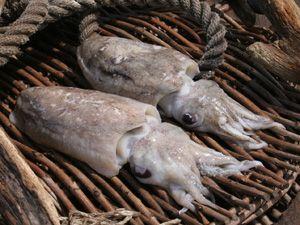 calamari pfanne rezept eat smarter. Black Bedroom Furniture Sets. Home Design Ideas