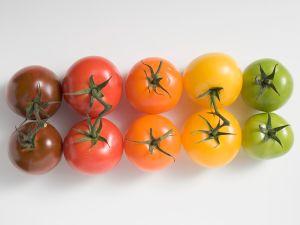 Warenkunde: Tomaten