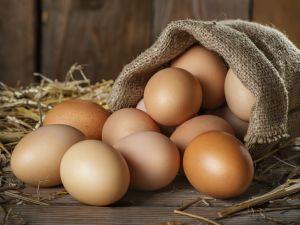 Wie lange sind Eier haltbar?