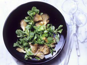 Winterlicher Salat mit Austernpilzen Rezept