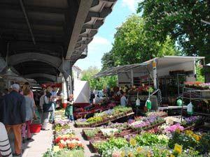 Welcher Wochenmarkt Deutschlands ist der schönste?