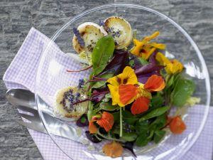 Lavendelhonig Rezepte
