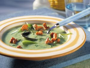 Zucchinicremesuppe mit gebratenen Pfifferlingen Rezept