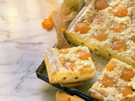 Käsekuchen mit Aprikosen und Streuseln