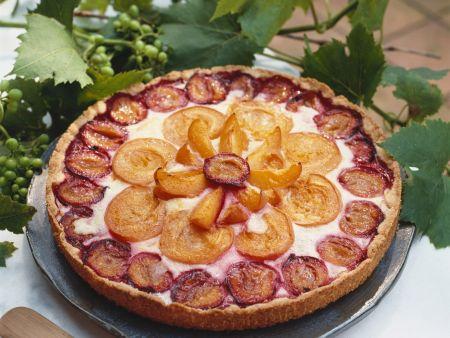 Aprikosen-Zwetschgen-Kuchen