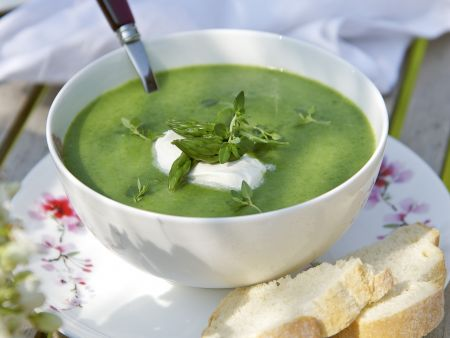 Brennessel-Spargel-Suppe