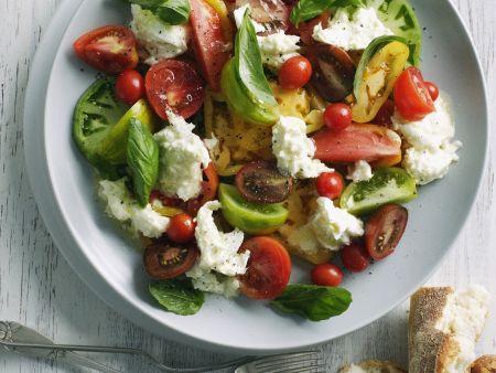 Bunter Tomatensalat mit Mozzarella auf einem Teller