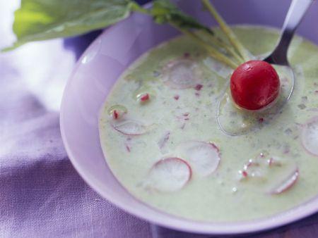 Cremige Radieschensuppe