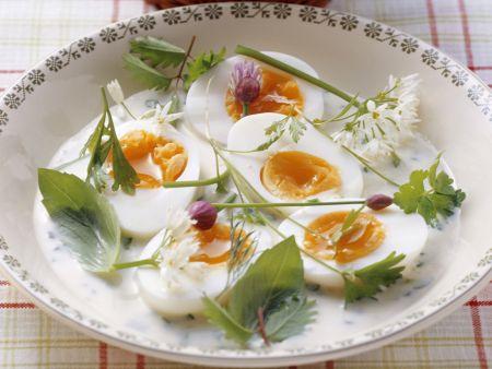 Eier in Kräutersoße