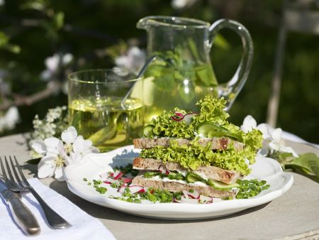 frischk se salat sandwiches rezept eat smarter. Black Bedroom Furniture Sets. Home Design Ideas