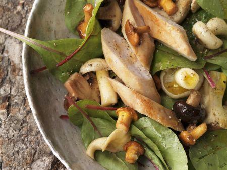 Herbstlicher Salat mit Pilzen und Kaninchenfilet