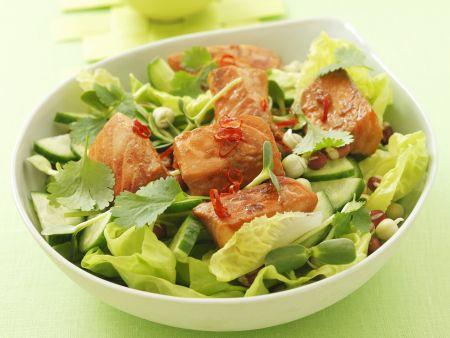 Marinierter Lachs auf Salat mit Gurke, Koriander und Chili
