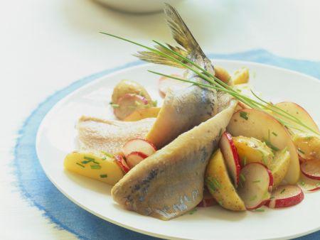 Matjesfilets mit marinierten Kartoffeln und Radieschen