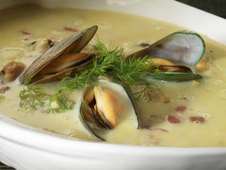 Muschelsuppe nach amerikanischer Art