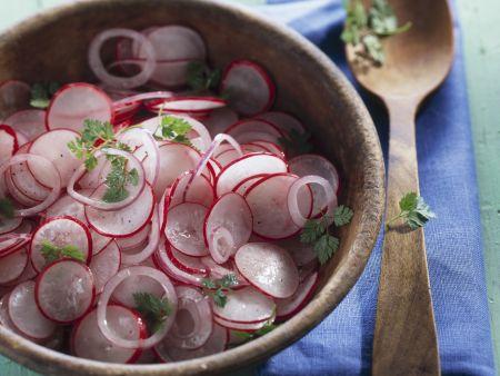 Radieschen-Zwiebel-Salat