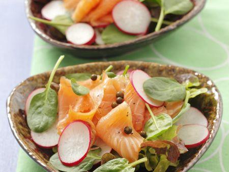 Salat mit Spinat, geräuchertem Lachs, Radieschen und Pfefferkörnen