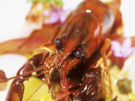 Südafrikanisches Gericht mit Flusskrebsen, Kastanien und Biltong