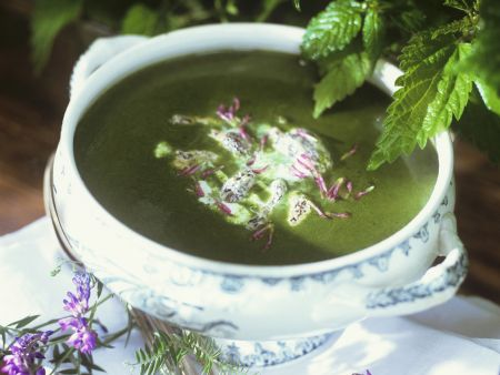Suppe aus Brennnessel und Morcheln