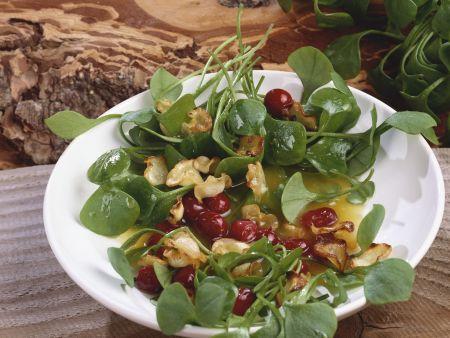 Tellerkraut mit Cranberries und Pastinakencrackern