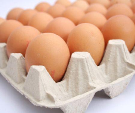 Sind zu viele Eier schädlich?