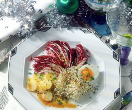 Alfalfa-Radicchio-Salat