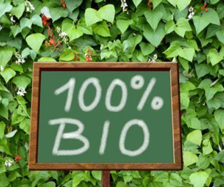 Biokost