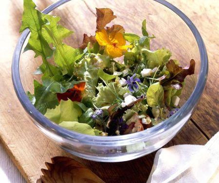 Blattsalat mit Käse