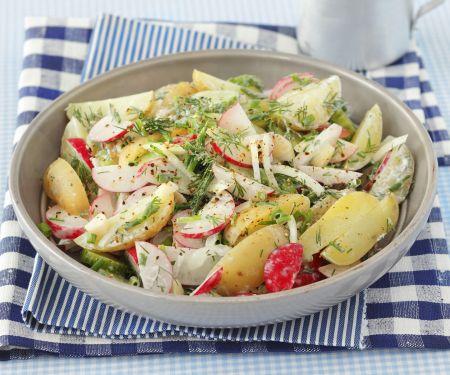 Bunter Kartoffelsalat mit Rüben und Gurke
