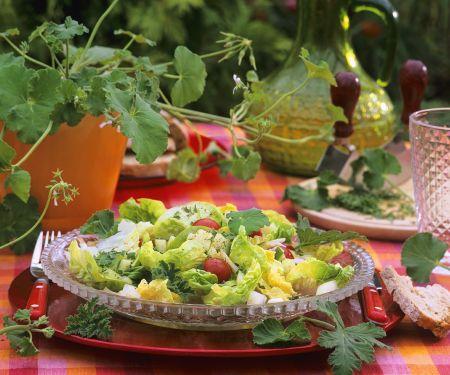 Bunter Sommersalat mit Duftgeranienblättern
