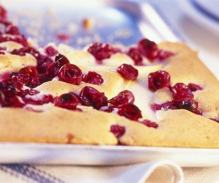 Cranberry-Blechkuchen