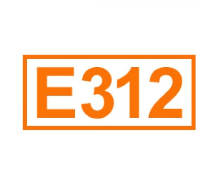 E 312 ein Antioxidationsmittel