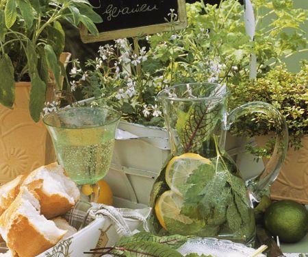 Feta mit Oliven, Giersch-Bowle, dahinter Gourmet-Geranien