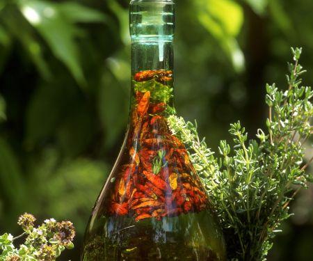 Gewürzöl mit Chili und Kräutern